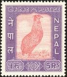 Nepal-1960