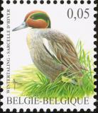 Belgium-2007