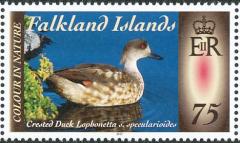 Falkland-Islands-2013
