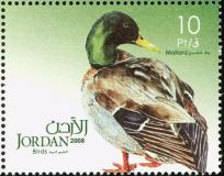 Jordan-2009