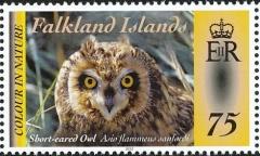 Falkland-Islands-2012